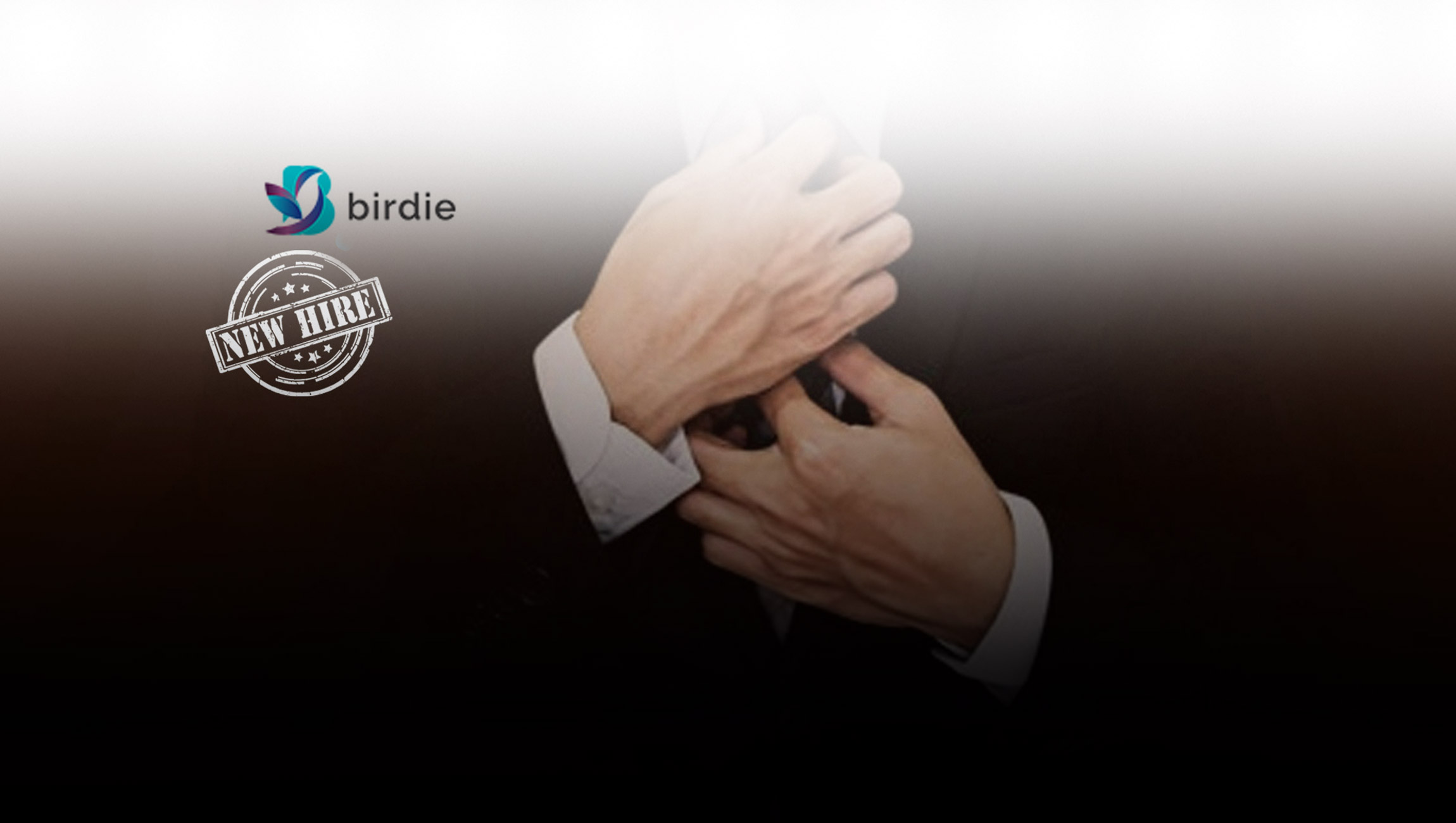 Birdie Announces Appointment of Market Research Veteran Ted Clark as New Chief Operating Officer 2