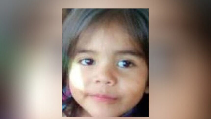 Amber Alert leads to safe return of Texas 2-year-old covered in blood after car crash 6