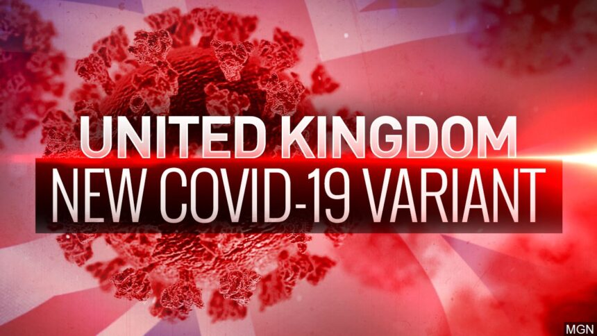 First Texas case emerges of new, potentially more contagious UK variant of Covid-19 6