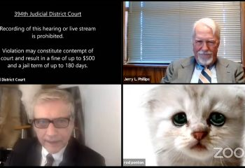 Texas lawyer tells judge 'I'm not a cat' after a Zoom filter mishap in virtual court hearing 15