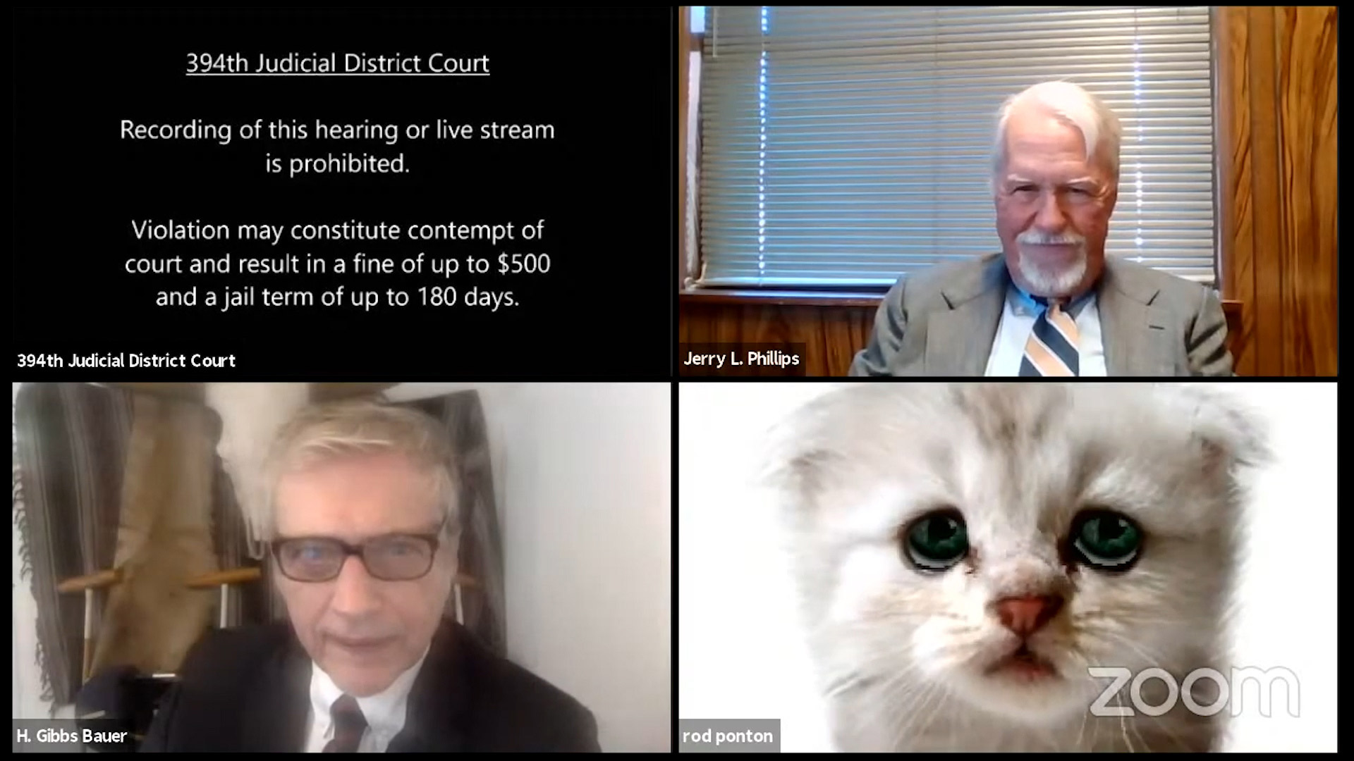 Texas lawyer tells judge 'I'm not a cat' after a Zoom filter mishap in virtual court hearing 5