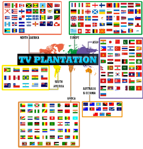 TV Plantation Launches a Fundraiser Project to Launch, Distribute, and Market Their Services 12