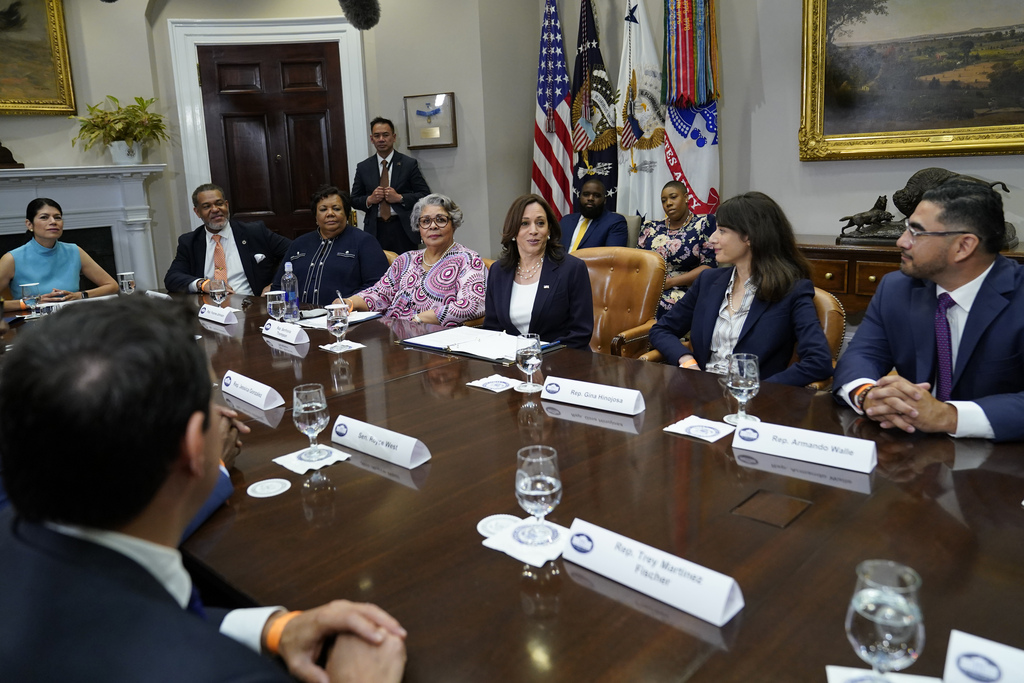 Harris meets with Texas lawmakers, talks voting rights strategy 6