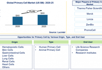 Primary cell market is expected to grow at a CAGR of 7%-9% by 2025 – An exclusive market research report by Lucintel 6