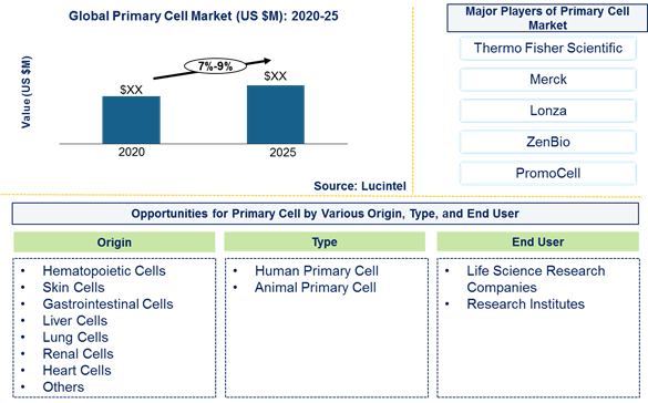 Primary cell market is expected to grow at a CAGR of 7%-9% by 2025 – An exclusive market research report by Lucintel 15