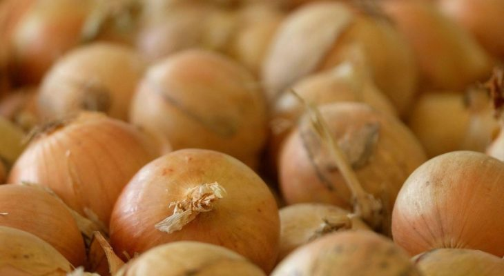 Onions from Chihuahua tied to salmonella outbreak sickening hundreds in Texas 11